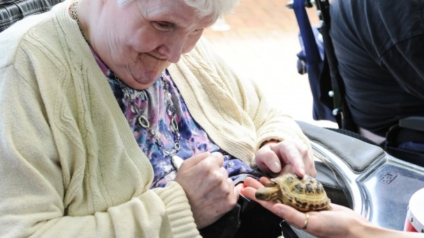 Resident with tortoise at Llanhennock Lodge